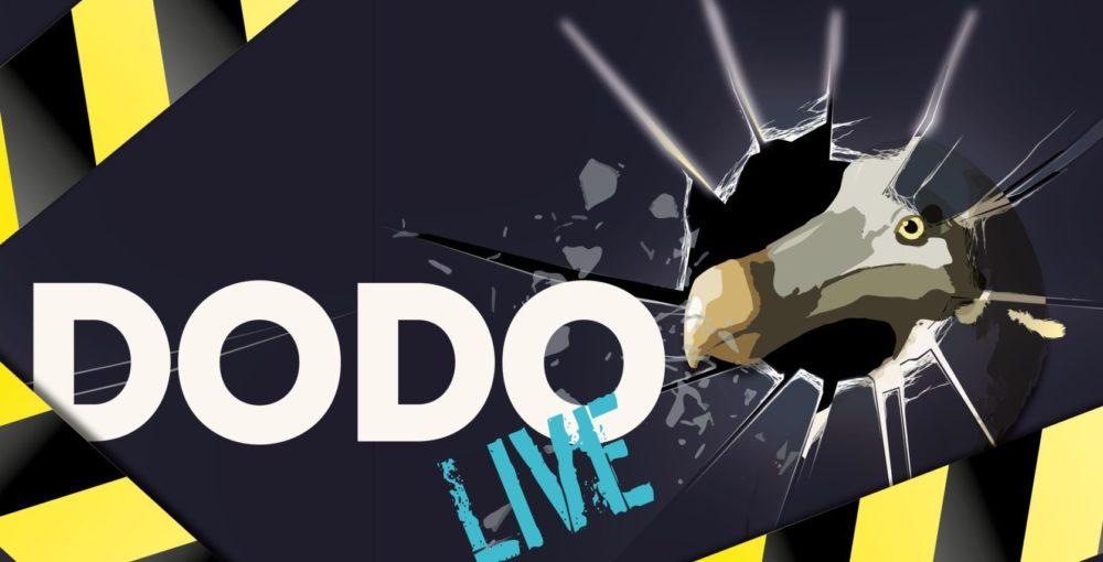 Dodo live liggend zonder tekst