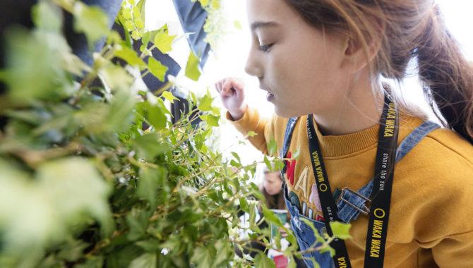 De Vrijstaat - kunstwerkplaats voor jong Utrecht olanda Schouten - Flower Bomb  Kunstenaar Jolanda Schouten neemt je mee op ontdekkingstocht door de Tuin en in de werkplaatsen ga je zelf aan de slag. Benieuwd wat je allemaal kunt doen? Maak een eigen aquarel van bloemen in het Tuinatelier, neem deel aan de theeceremonie in de Theetuin, maak je eigen bloembom in de Kleiwerkplaats en bouw mee aan het Tuintapijt van vilt. En als het weer het toelaat dan veroveren we de buitenruimte door middel van Guerrilla Gardening.  Flower Bomb gaat over de energie van kleur, van ontluikende zaadjes die in NO TIME tot een veld van diepgele zonnebloemen, helderpaars kattenkruid, donkerrode amarylissen, knalgeel koolzaad en knalroze monarda's uitbarsten. Planten zijn totaal coronaproof, ze zijn ons voedsel, onze schone lucht, onze healing voor een leefbare prachtige blauwe planeet.